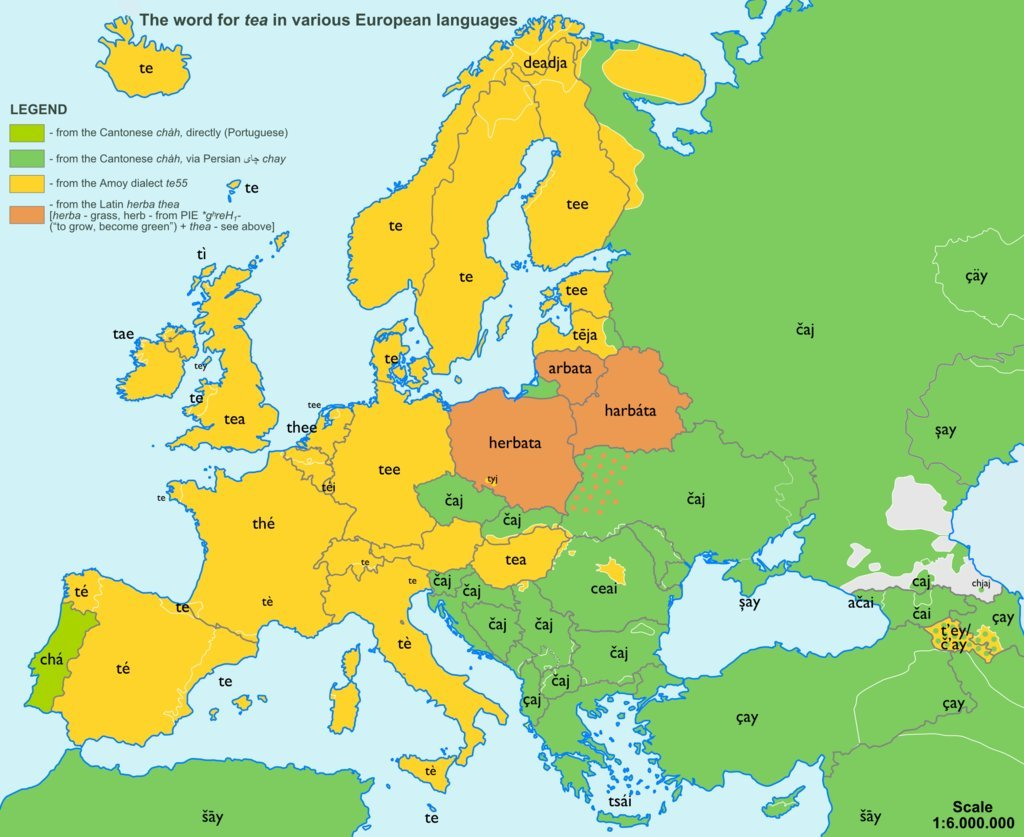 The word Tea in other lanuages of Europe